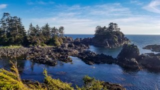 A coastal view on the Wild Pacific Trail