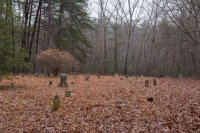 Weird middle-of-nowhere graveyard in the woods