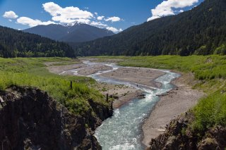 The restored Elwha River. The lighter green vegetation is where the reservoir used to be.